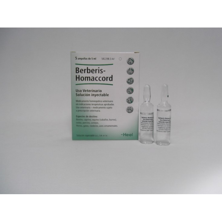 BERBERIS HOMACCORD 5 amp. 5 ml.