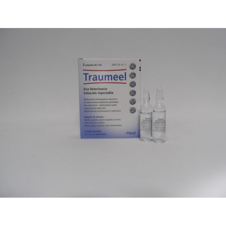 TRAUMEEL  5 amp. 5 ml.