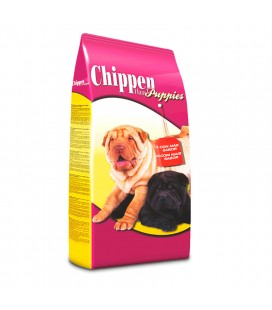 CHIPPEN HAM PUPPIES
